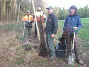 Eine Gruppe von Menschen, die gerade dabei sind Bäume zu pflanzen