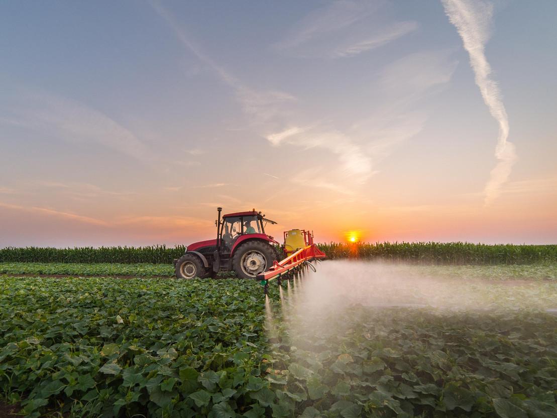 Ein Traktor sprüht Pestizide auf einem Gemüsefeld.
