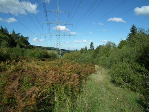 Moderne Stromnetze sind essentiell für die Energiewende