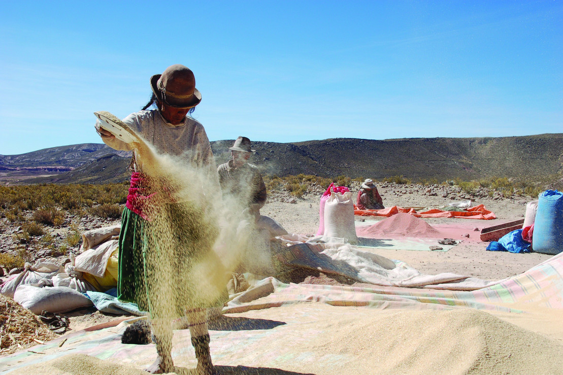 Der Hand in Hand-Fonds von Rapunzel und der Deutschen Umwelthilfe: Bäuerin auf einem Quinoa-Feld in Bolivien